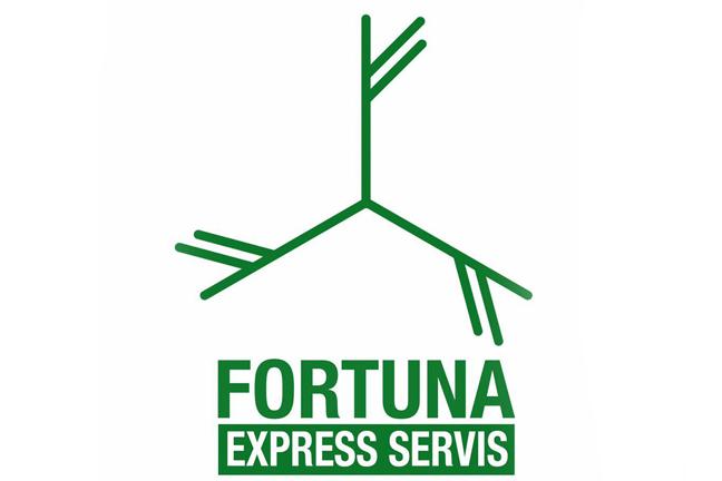 Агентство «Fortuna Express Service»